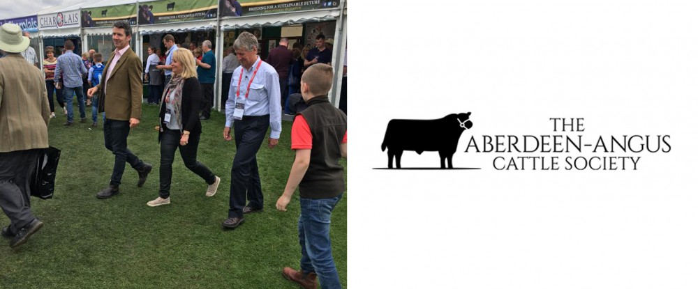 Aberdeen Angus Interview at the Royal Highland Show